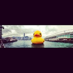 .@marcosora | #hongkong #snap #snapshot #view #city #ferry #starferry #harbour #pier #victo... | Webstagram - the best Instagram viewer