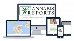 Cannabis Reports in the Top 5 Tech Companies Listed in March Cannabis Now Magazine Review