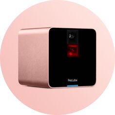 Petcube Camera interactive pet camera with laser pointer in Rose Gold color