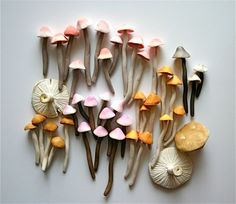 Candy Sweet Colorful Wild Mushrooms / A Collection of 42 Freshly Harvested Candy Mushrooms via Etsy diy candy stuff Wild Mushrooms, Stuffed Mushrooms, Edible Mushrooms, Keramik Design, Paperclay, Color Inspiration, Artsy, Texture, Illustration