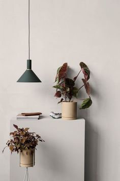 ferm LIVING design for the living room. Shop design for your living room online. Danish design furniture and interior - We offer low cost shipping! Cafe Interior, Interior Styling, Color Interior, Ferm Living Plant Stand, Blog Deco, Ceramic Design, Make Design, Home Collections, Potted Plants