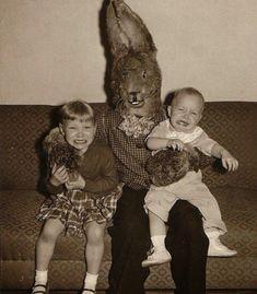 conejo fotografías perturbadoras