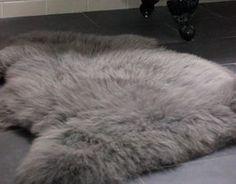 Slate Grey Sheepskin Rug - more