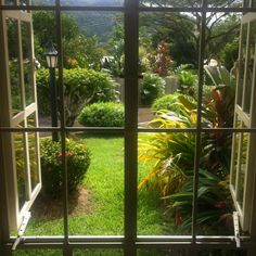 View from the window in Trinidad. Trinidad and Tobago - Trinidadism Island in the Sun  The Home Of Pan - Gary Trotman @Steelasophical UK Steel Band http://www.steelband.co.uk/west-indies
