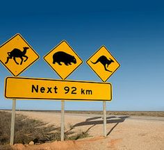 Photo about Kangaroo, wombat and camel warning sign Nullarbor South Australia. Brisbane, Melbourne, Sydney, Perth, Great Barrier Reef, Western Australia, Australia Travel, Funny Road Signs, Wave Rock