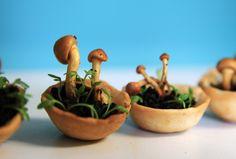 Designer testa alimentos que crescem de forma natural após serem impressos em 3D - Edible Growth