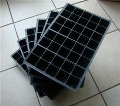 6 x 40Cell Seed Tray Cavity Inserts -- Find out more about the great product at the image link.