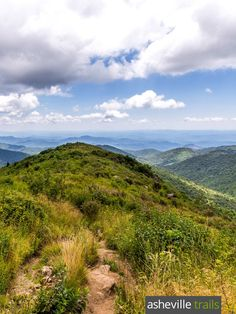 Top Blue Ridge Parkway hikes near Asheville, NC: hike to stunning views on the wildflower-covered Black Balsam Knob summit