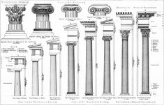 The 3 orders of classical greek architecture: doric, Ionic and Corinthian. These order were not always strictly maintained but used more as startingpoints as can been seen in the variety of proportions within a single order shown here.