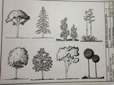 vegetacion dibujo arquitectonico - Buscar con Google