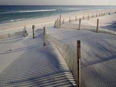 miss the beach.