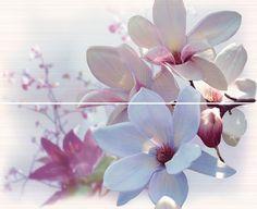 Fresh D. Pantone Colours, Tile Panels, Year 2016, Color Of The Year, Rose Quartz, Fresh, Floral, Pink Quartz, Flowers