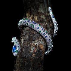 Serpent Bangle by Scavia Snake Jewelry, High Jewelry, Animal Jewelry, Jewelry Box, Jewelry Accessories, Jewelry Design, Designer Jewellery, Snake Ring, Snake Bracelet
