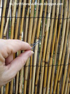 29 Best Reed Fencing Images On Pinterest Bricolage Backyard Ideas