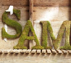 how to make knock -off Pottery Barn moss-covered letters.