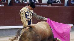 Notiferias Toros en Venezuela y el Mundo: Toros Víctor Barrio sale a hombros en Calahorra