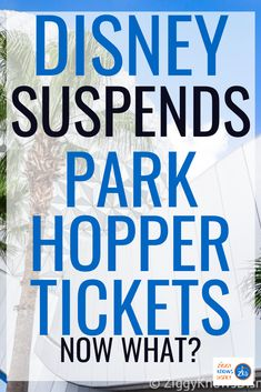 When buying Disney World tickets, there are so many options and things to consider it can be really confusing. One of the biggest decisions is deciding whether to get the Park Hopper ticket or not. When Disney World reopens, however, will park-hopping even be possible anymore?  Read here to learn all of the details.  #disney #disneyworld #disneytravel #disneyplanning #disneytravel Disney World Secrets, Disney World News, Disney World Parks, Disney World Tips And Tricks, Disney Tips, Disney World Vacation Planning, Walt Disney World Vacations, Disney Travel, Best Disney Park