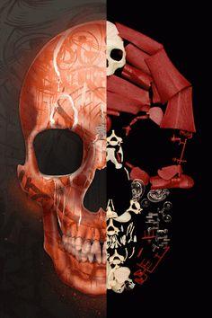 Skull....