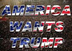 Trump 2016!!!