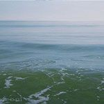 horizonte, óleo sobre lienzo, 55x150 cm.