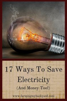 17 Ways To Save Electricity (And Money Too!)