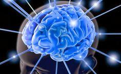 Harmonia e Saúde - revista online de tratamentos naturais: Programação Neurolinguistica - o que é isto?
