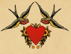 traditional barn swallows
