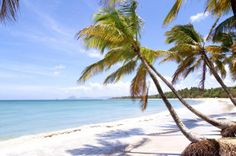 Caribbean living island life tropical paradise