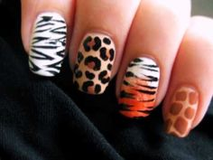 Learn how to do animal print looks, could paint all nails in one or use them all together.