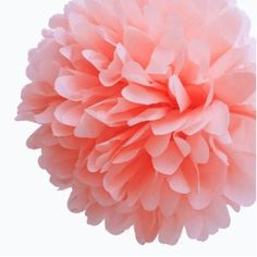 "Dress My Cupcake 14"" Coral Peach Tissue Paper Pom Poms, Set of 4 - Beach Party Decorations, Spring Party Supplies"