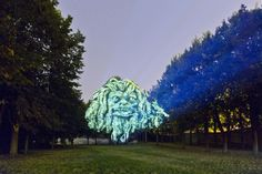 projection mapping on trees