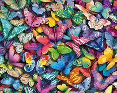 Google Afbeeldingen resultaat voor http://darcyonline.weblog.nl/files/2010/04/f610e08148