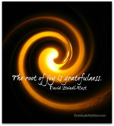 """The root of joy is gratefulness"" - David Steindl-Rast Gratitude Quotes, Attitude Of Gratitude, Express Gratitude, Kinds Of Energy, Grateful Heart, Spiritual Wisdom, Spiritual Inspiration, Positive Thoughts, Frases"