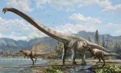 Seismosaurus(?)