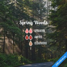 Spring Woods - Essential Oil Diffuser Blend