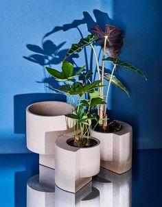 Tortuga-Living-Platform-Vessel-Planters-3 - Design Milk Indoor Outdoor, Indoor Plants, Outdoor Gardens, Terrazzo, Bauhaus Architecture, Journal Du Design, Milk Shop, 2020 Design, Peach Colors