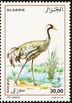 мар57Birds on stamps: Algeria Algerije Algérie