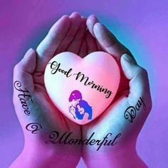 Latest good morning images with flowers ~ WhatsApp DP, Love DP, DP Images, WhatsApp DP For Girls Good Morning Happy Sunday, Good Morning My Friend, Good Morning Wishes, Good Morning Quotes, Gd Morning, Night Quotes, Morning Coffee, Good Day Images, Messages