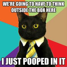 Business cat thinks outside the box