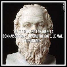 - Socrate -