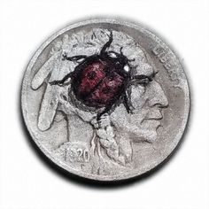 Ladybug #347 Hand Engraved  Hobo Nickel  by Luis A Ortiz