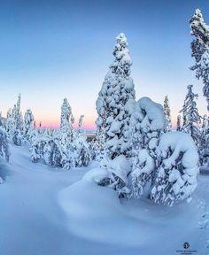 Magical winter landscape. Ylläs Äkäslimpolo, Lapland, Finland
