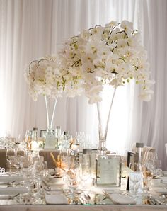 Tall, White Orchid Centerpieces -- really beautiful especially if you put candles underneath. You know how Jeffrey loves candles