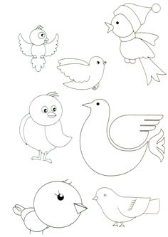 bird ideas