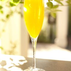 Break out the bubbly because it's time for mimosas! The famous Champagne and OJ cocktail is a fantastic drink for brunch and a brilliant addition to any special occasion. Sparkling Wine Cocktail Recipes, Wine Cocktails, Fun Drinks, Beverages, Summer Drinks, Mango Drinks, Cocktail Drinks, Sangria, Sweet Cocktails