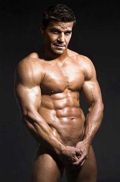 David Boreanaz what a man! David Boreanaz, Man Photography, Movie Songs, Skin So Soft, Male Body, Hot Boys, Sexy Men, Sexy Guys, The Man