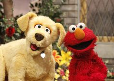 Meet Brandeis the service dog! This newest member of the Sesame Street Muppet family helps teach kids about disability and acceptance. Disability Awareness Month, Elmo And Friends, Easter Seals, Elmo World, Medication For Dogs, Fraggle Rock, Helping Children, Therapy Dogs, Jim Henson