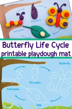 Life Cycle of a Butterfly Playdough Mat – Free Printable – kindergarden Summer Activities For Toddlers, Crafts For Kids, Printable Games For Kids, Free Printable, Life Cycle Craft, Playdough Activities, Butterfly Crafts, Printable Butterfly, Butterfly Life Cycle