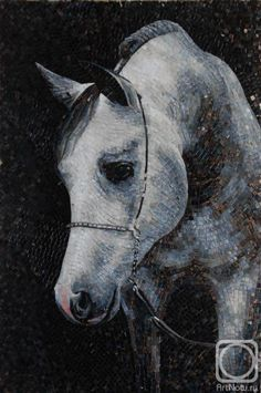 Horse - Mosaic - Wow! (This is not a photograph of a horse - this is a mosaic!)