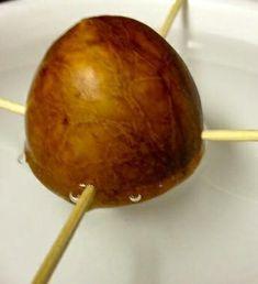 Como plantar abacate em casa. Existe uma forma muito simples e cômoda de fazer crescer a árvore do abacate, esta fruta tão boa, que se utiliza nas saladas, nachos e milhares de pratos da nossa culinária. Neste artigo explicaremos ...